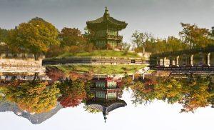 Visiter autrement la Corée du Sud, en effectuant un voyage écologique